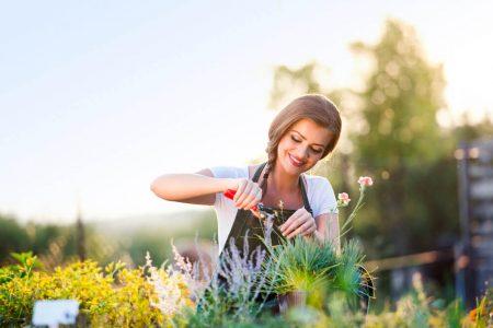 jardinage haute savoie